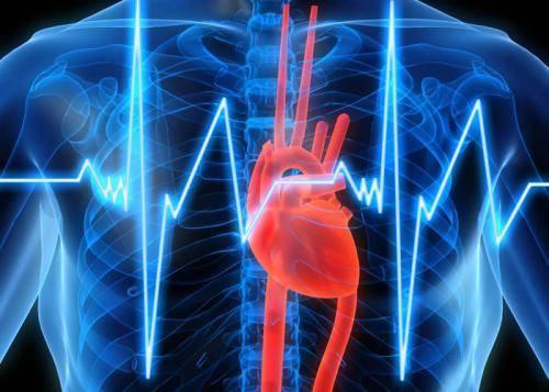 сердце в груди картинка2