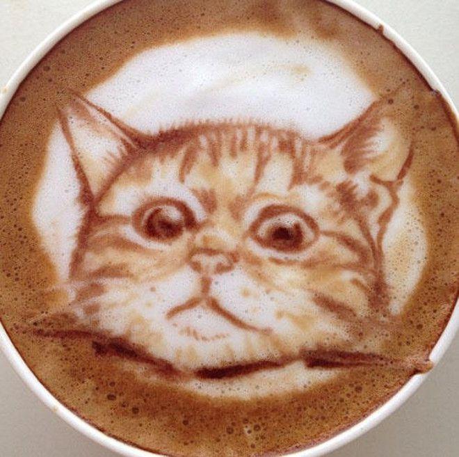фото чашка латте с рисунком кошки