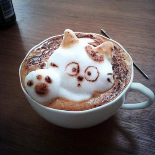 рисунок на кофе котенок фото