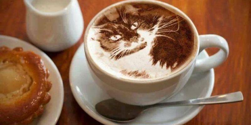 чашка латте с рисунком кота