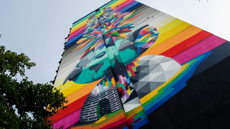 стрит-арт испанськго художник Okuda, Киев, Украина фото